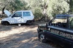 Auto rubata e incendiata ritrovata tra Bitonto e Terlizzi