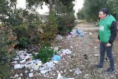 Un tappeto di rifiuti nei terreni adiacenti a viale Gramsci. Cosa fare?