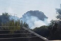 Grassi denuncia: «Da giorni fumo e aria irrespirabile su via vecchia Sovereto»