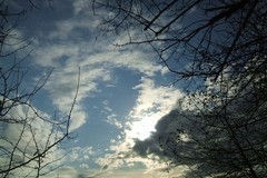 Venti sciroccali e tempo variabile nella domenica di Terlizzi