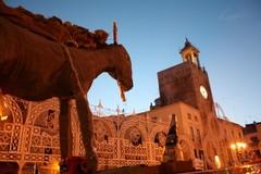 Le foto della Festa del Ciuccio, tradizione sempre nel cuore dei terlizzesi