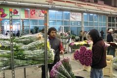 Segretario commissione Agricoltura alla Camera incontra a Terlizzi gli operatori del mercato dei fiori