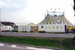 Cinquanta bambini al circo Togni
