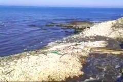 Acqua marrone a Torre Calderina: viene dal depuratore di Ruvo-Terlizzi?