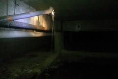 Scuola nel mirino dei vandali, sotterranei allagati