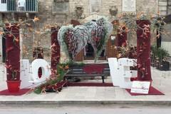 La panchina degli innamorati sotto la torre... Terlizzi festeggia così gli innamorati