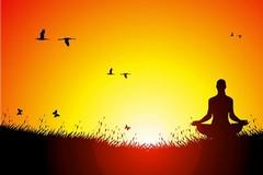 Parco Comunale, iniziate le sedute di yoga aperte ai cittadini