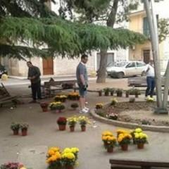 Cittadini in piazza... per sistemare le villette di Piazza Pio XII