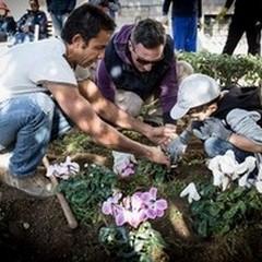 """Immigrati e volontari piantano fiori al  """"De Napoli """""""