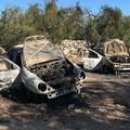 Auto rubate ritrovate incendiate nell'agro di Terlizzi, indagano i Carabinieri