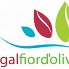 Gal Fior d'Ulivi, arrivano oltre 4 milioni di euro: c'è anche Terlizzi