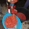 La salsa, una tradizione sempre viva a Terlizzi