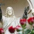 Un'azienda terlizzese dona le sue rose al cimitero comunale
