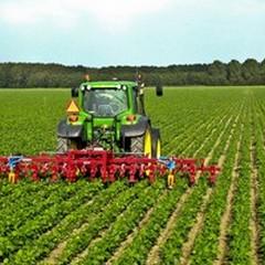 Piano rurale regionale, 73% di aziende fuori