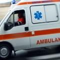 Litigano per un muretto a secco: uno dei due ferito a morsi