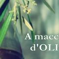 """""""A macchia d'olio """", iscrizioni aperte fino al 15 marzo"""