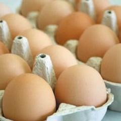 Uova, l'etichetta virtuosa per tutelare i consumatori