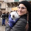 Benedizione degli animali, tutte le foto / GALLERIA FOTO