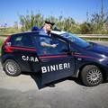 Maltrattamenti a genitori e conviventi, arrestato dai Carabinieri