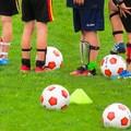 Sport e salute: nuova piattaforma informatica per indennità collaboratori per i mesi di aprile e maggio