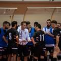 Futsal Terlizzi, il riscatto parte da Pellegrino Sport