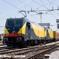 Non solo passeggeri, Ferrotramviaria punta al trasporto merci