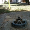 Al Parco Marinelli un'estate senza acqua