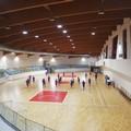 Futsal, Nico Allegretta è l'allenatore