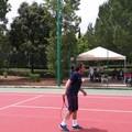 """Tennis, al via il torneo nazionale  """"Città di Terlizzi """""""
