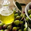 Olio extravergine di oliva, crollo della produzione e prezzi che salgono