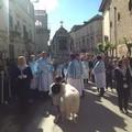 Riprende la processione in direzione di Sovereto. Le foto.