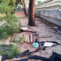 Degrado al Parco Comunale (FOTO)