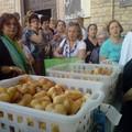 Terlizzi celebra Sant'Antonio di Padova
