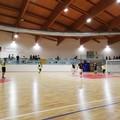 7°Citta dei Fiori, la finale sarà Tesoro Molfetta-Bitonto Futsal