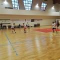 Domenica prossima l'esordio del Futsal Terlizzi nel campionato under 21