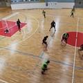 Il Futsal Terlizzi torna alla vittoria battendo 6-5 il Nettuno Bisceglie