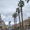 Ancora pioggia nella domenica di Terlizzi