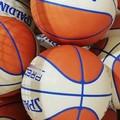 Basket giovanile: tornano ad allenarsi i gruppi squadra della Nike Terlizzi