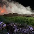 In fiamme scarti di lavorazione delle olive in contrada Portoni