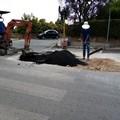 Blackout in via Bovio: ditta costretta ad intervenire sotto il nuovo manto stradale