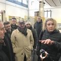 Xylella, il 26 marzo Di Maio incontrerà gli olivicoltori