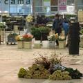 La mafia barese aveva messo gli occhi sui fiori di Terlizzi