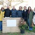 I cittadini adottano due spazi verdi in viale Dei Giardini: a Terlizzi nascono gli orti urbani
