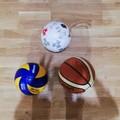 Utilizzo impianti: le società sportive scrivono all'Amministrazione comunale