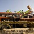 Anpa, «rammarico» per il mancato invito al consiglio comunale sulla crisi agricola