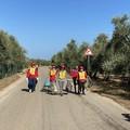 """Despar Centro-Sud e Legambiente a Terlizzi per l'edizione 2021 di """"Puliamo il mondo"""""""