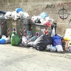 Vietato gettare rifiuti indifferenziati durante il week end