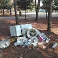 Rifiuti abbandonati nelle campagne, Puliamo Terlizzi scrive al sindaco