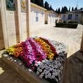 Un arcobaleno di fiori per i defunti: il cuore grande di Mariapia Sigrisi