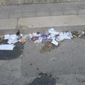 A Terlizzi strade sempre più sporche / FOTO